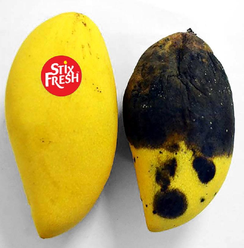 stiker buah Istimewa