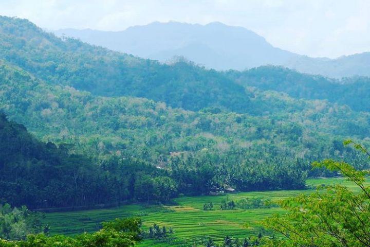 Menikmati glamping di Bukit Menoreh, sajikan panorama Borobudur