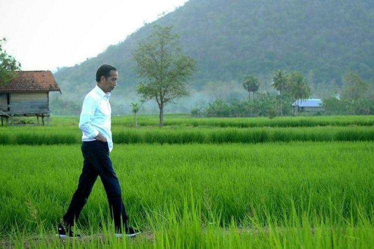 5 Kenangan masa kecil Presiden Jokowi, hobi ngusilin pedagang