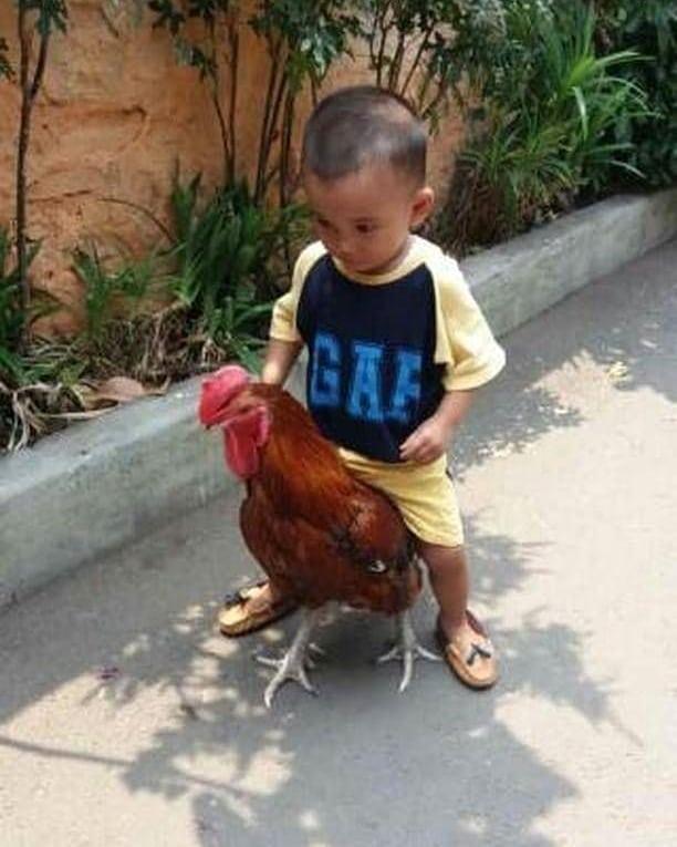 12 Foto lucu anak kecil bertingkah ekstrem ini bikin tepuk ...