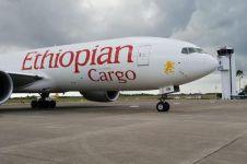 TNI AU paksa Ethiopian Air mendarat di Batam, ini penyebabnya