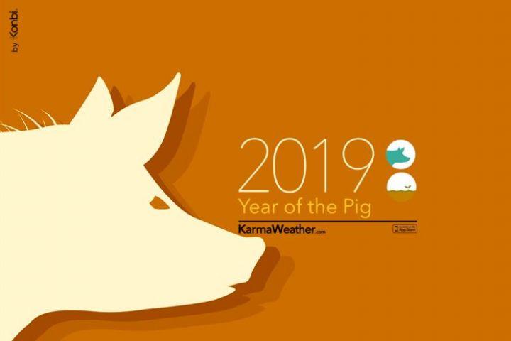 Tahun baru Imlek, ini peruntungan asmara 12 shio di tahun babi