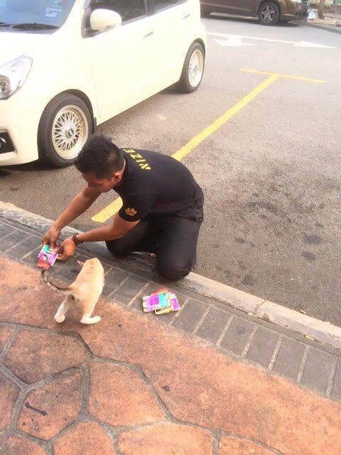 pria sedekah kucing © 2019 brilio.net