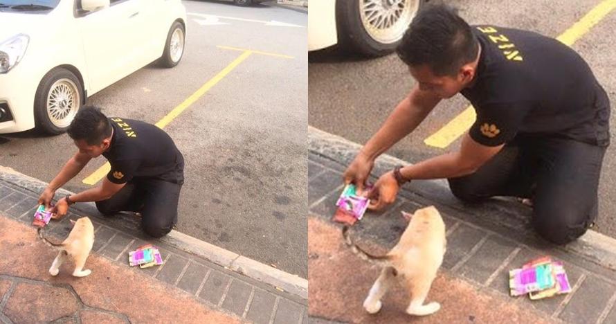 Kisah pria 2 bulan menganggur dapat kerja usai beri makan kucing