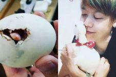 Diselamatkan dari restoran, 10 potret bebek putih ini lucu abis