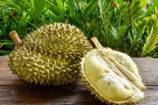 12 Manfaat durian bagi tubuh, bikin tambah semangat makannya