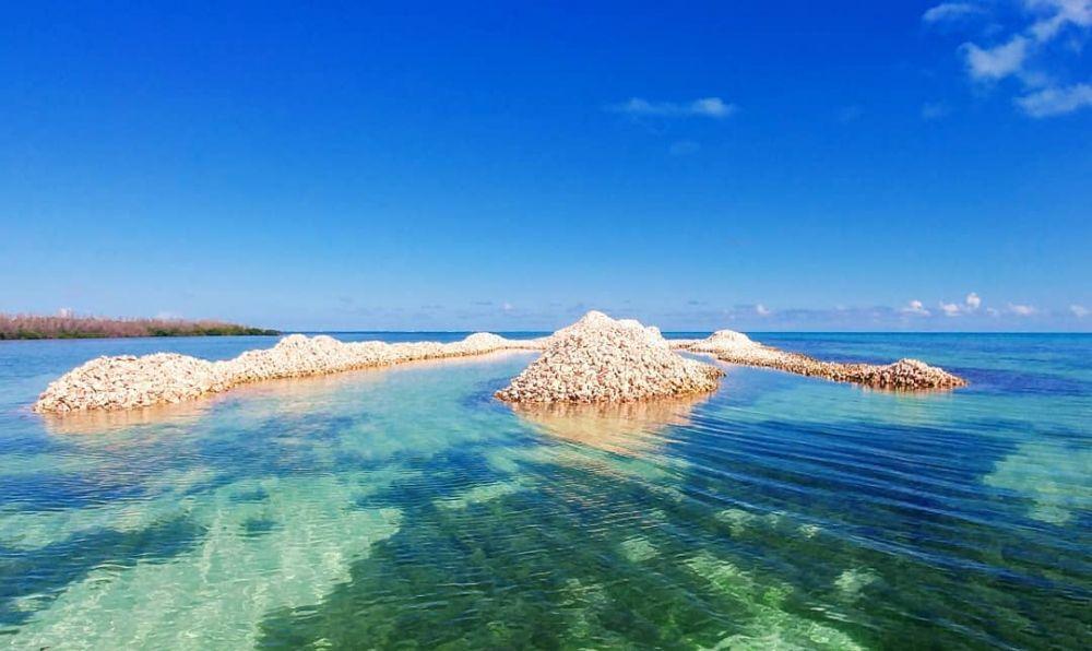10 potret pulau dari cangkang keong © 2019 brilio.net