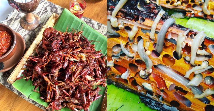10 Makanan ekstrem khas Indonesia yang jarang diketahui