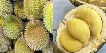 8 Makanan & minuman ini tak boleh disantap bersama durian, bahaya