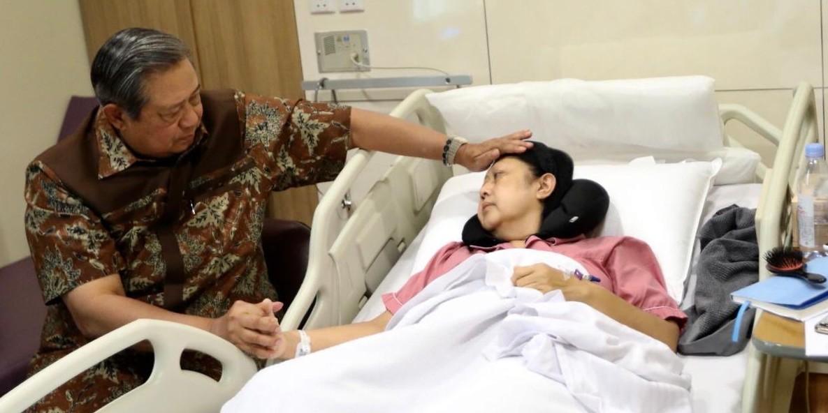 3 Fakta transplantasi sumsum tulang yang akan dijalani Ani Yudhoyono
