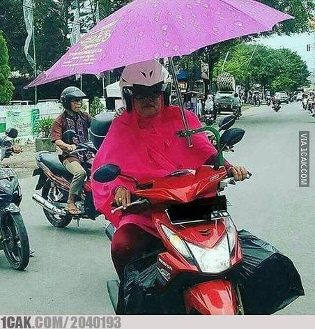 penguasa jalanan indo © 2019 berbagai sumber