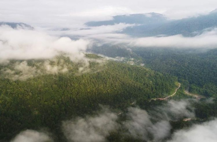 Tambrauw, surga tersembunyi di wilayah Papua Barat
