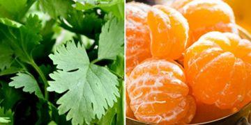 10 Makanan alami ini bisa hilangkan varises