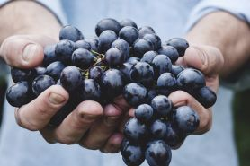 6 Buah yang ada di Alquran & manfaatnya untuk kesehatan