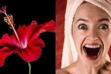 6 Manfaat bunga sepatu untuk kecantikan, bisa cegah penuaan dini