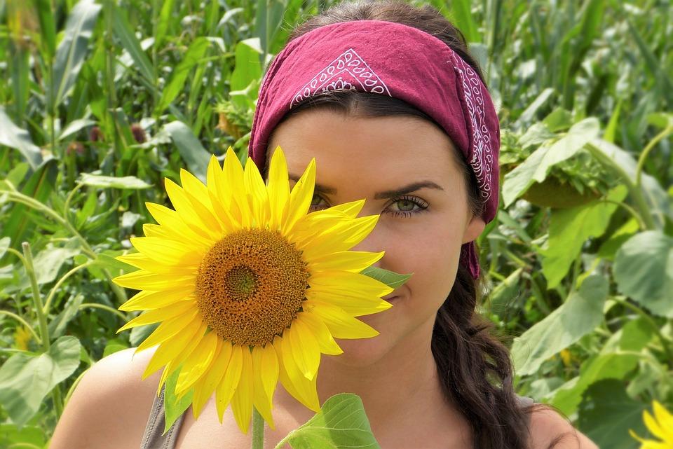 biji bunga matahari istimewa