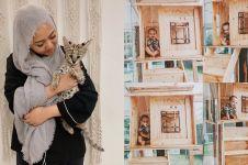 8 Penampakan kandang kucing Rachel Vennya ini keren abis
