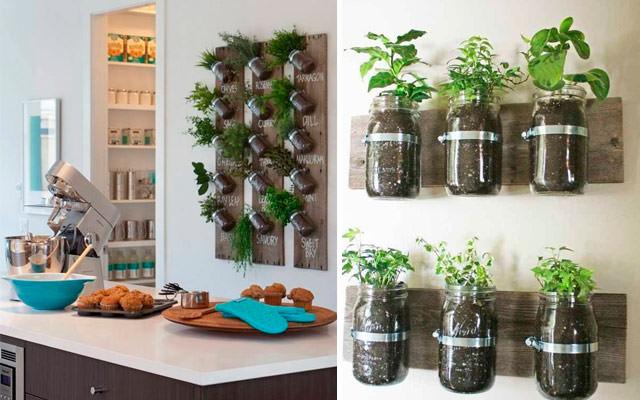 10 Inspirasi berkebun di lahan sempit, bikin rumah makin asri