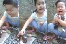 6 Kisah sedih anak menangis karena ayam mati, bikin ikut terharu