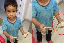 Ini nasib ayam yang dibawa bocah ke rumah sakit karena ditabrak