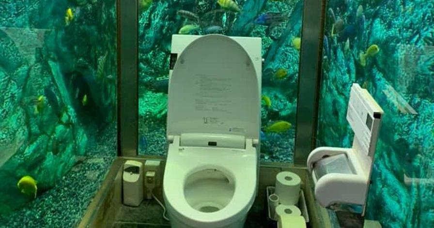 Unik, kafe ini hadirkan toilet dengan konsep bawah laut
