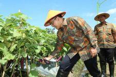 Banyuwangi gelar lomba startup pertanian, hadiahnya Rp 150 juta