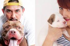 12 Momen keluarga Ryan Delon pelihara anjing, penyayang binatang