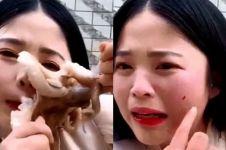 Gurita serang wajah wanita yang ingin memakannya hingga terluka