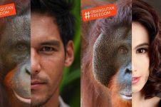 Kisah di balik foto seleb dan orangutan ini bikin salut