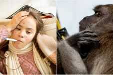 Waspada cacar monyet, Batam sediakan alat pendeteksi panas tubuh