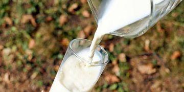 5 mitos dan fakta konsumsi susu, bikin gemuk?