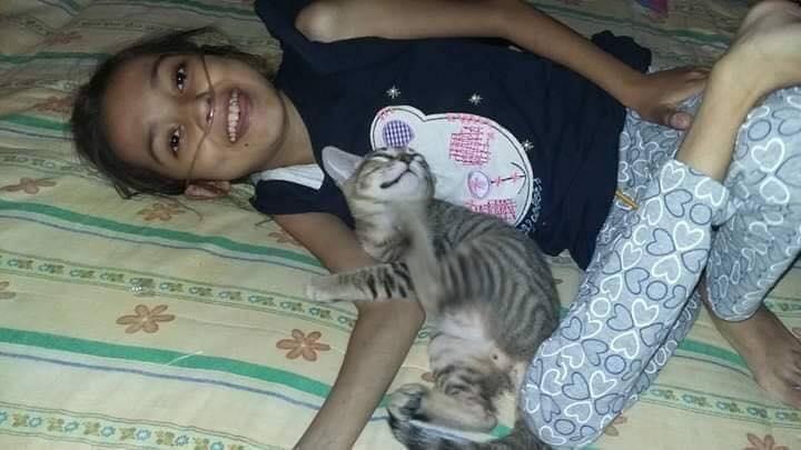 6 Potret kucing temani cewek yang sakit parah, endingnya bikin mewek
