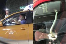 15 Potret absurd di jalan raya ini bikin heran