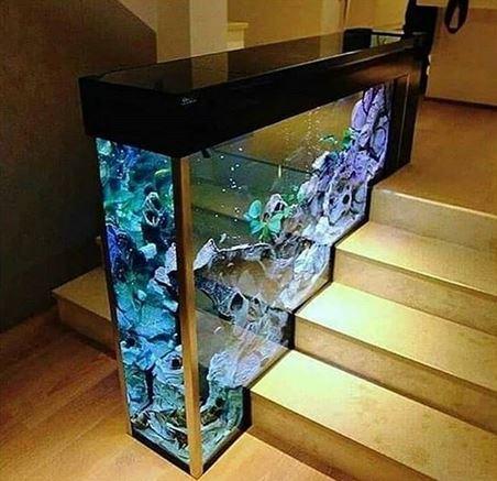 Desain Akuarium Ruang Tamu  13 desain akuarium untuk mempercantik ruangan pengusir stres