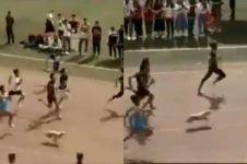 Video anjing tiba-tiba ikut lomba lari 100 meter, dapat juara lagi
