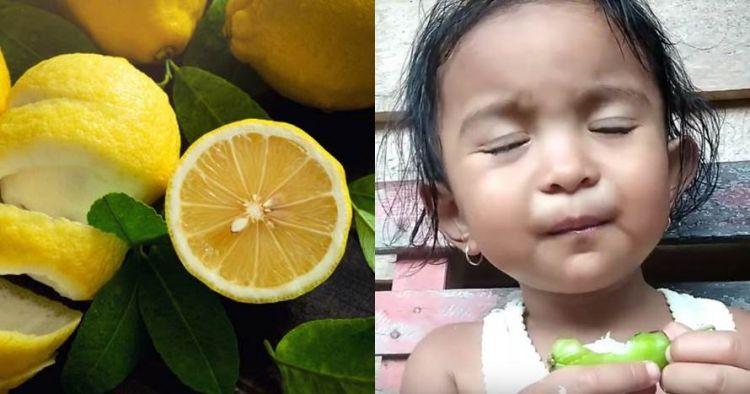 10 Ekspresi kocak anak kecil makan buah asam, lucu tapi kasihan