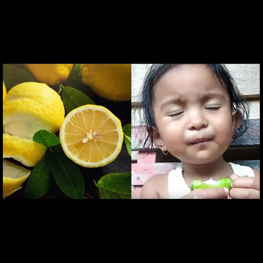 10 Ekspresi Kocak Anak Kecil Makan Buah Asam Lucu Tapi Kasihan