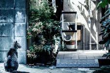 Saking uniknya, cara temukan kucing hilang ala Jepang ini viral!
