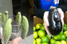 13 Buah dan sayuran ini bentuknya mirip makhluk hidup