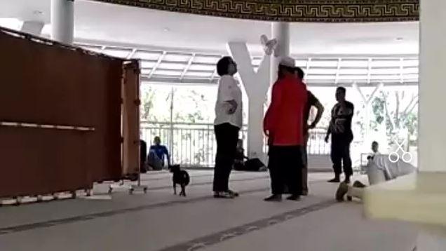 3 Kasus yang menjerat wanita pembawa anjing ke masjid