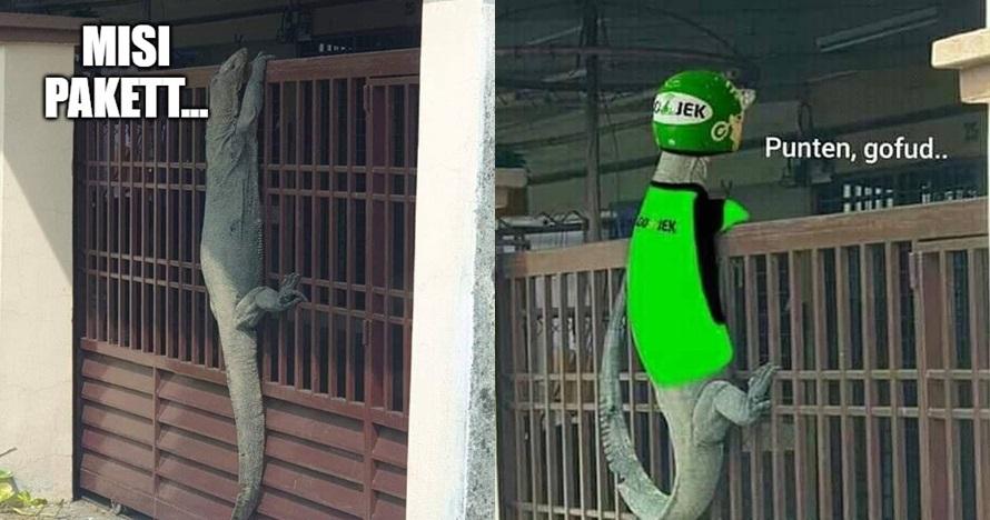 Viral foto biawak manjat pagar, 10 meme lucunya ini bikin ngakak