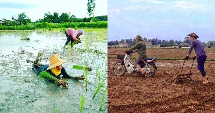 10 Aksi nyeleneh petani saat bercocok tanam ini bikin cekikikan