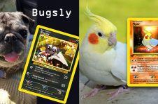 9 Desain kartu Pokemon dari hewan asli ini hasilnya bikin takjub