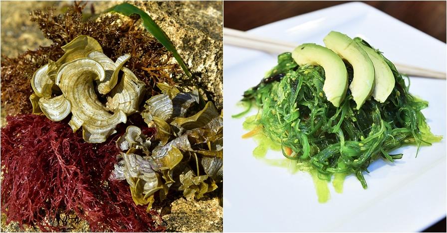 6 Manfaat rumput laut untuk kesehatan, cocok untuk program diet