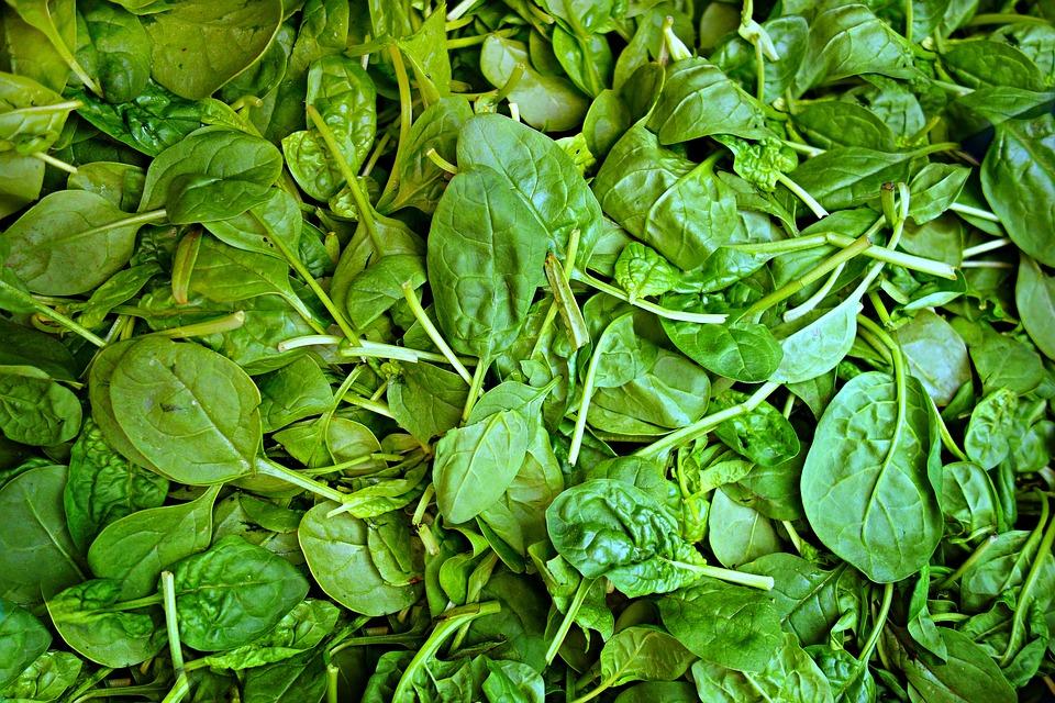 makanan cegah vertigo pixabay