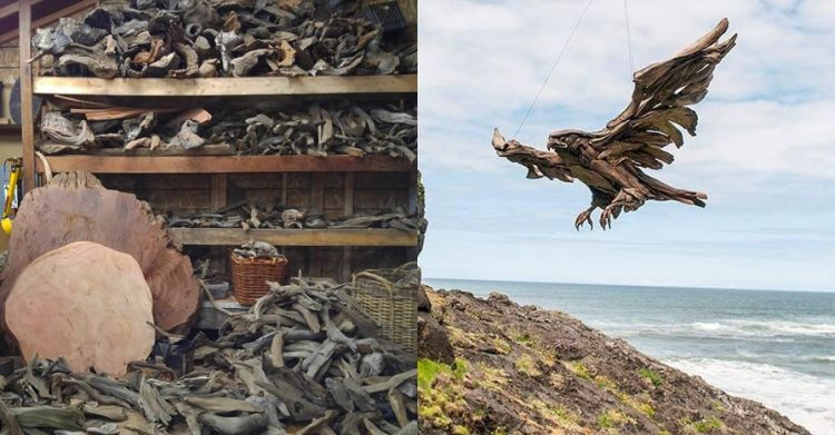 13 Patung hewan dari potongan kayu di pantai ini bikin takjub