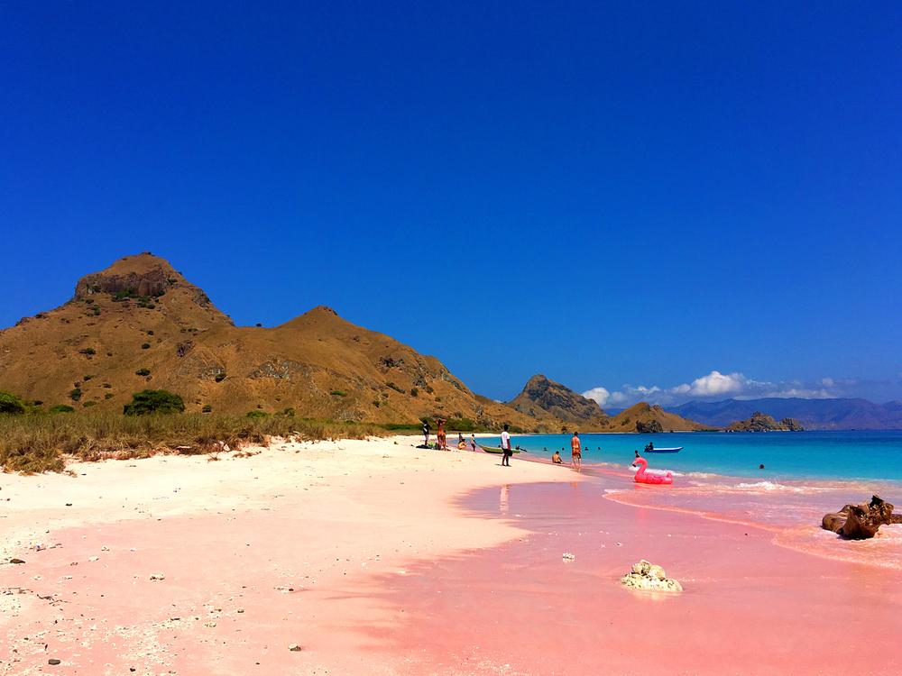Sensasi tinggal di atas kapal jelajahi 6 spot eksotis Labuan Bajo berbagai sumber