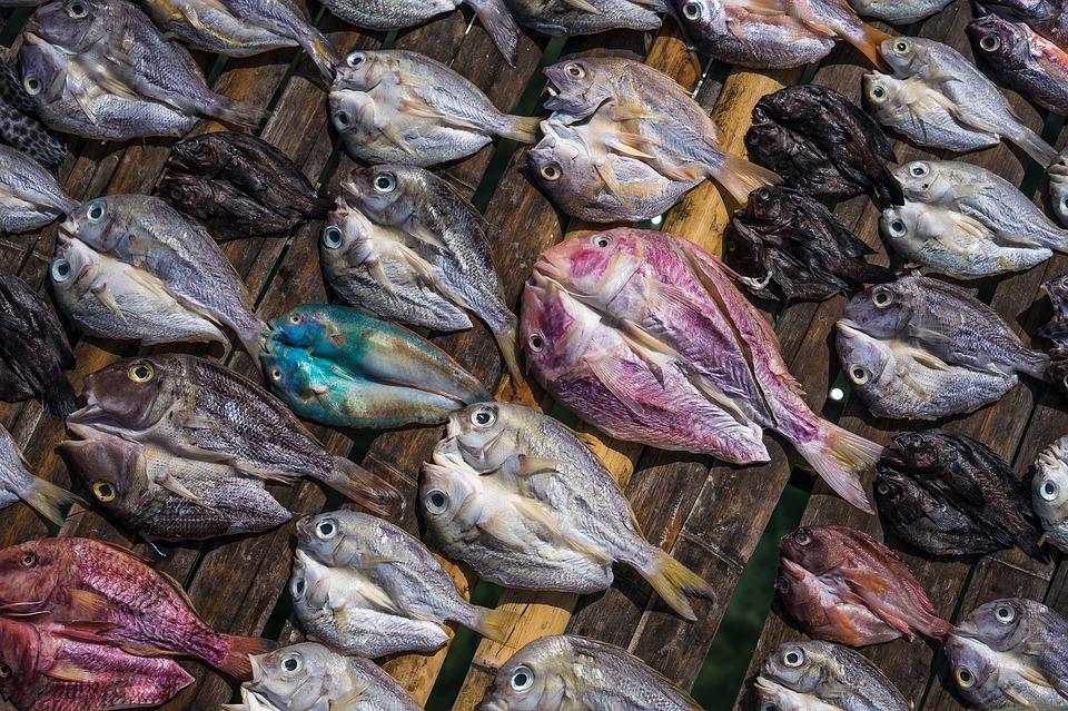 Manfaat ikan asin © 2019 brilio.net