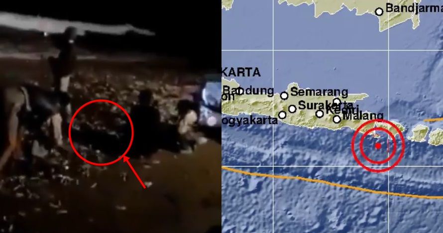 Viral video ribuan ikan terdampar di pantai sebelum gempa Bali
