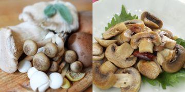 5 Manfaat konsumsi jamur untuk kesehatan, bisa cegah kanker